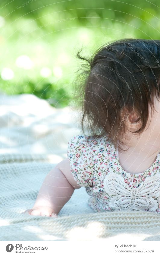 incognito Playing Summer Garden Human being Baby Infancy Life Hair and hairstyles 1 0 - 12 months Nature Meadow Clothing T-shirt Discover Relaxation Crawl Lie