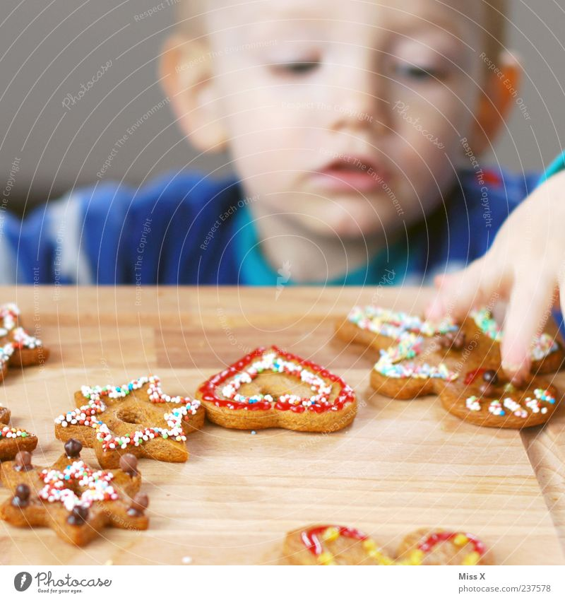 Human being Child Christmas & Advent Hand Eating Boy (child) Food Decoration Infancy Nutrition Cooking & Baking Sweet Star (Symbol) Delicious Candy Toddler