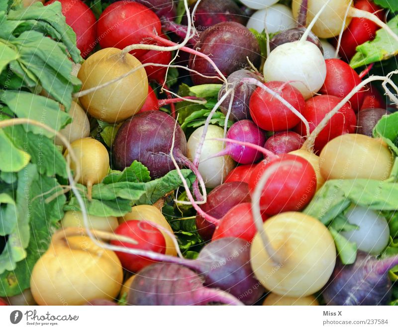 Nutrition Food Healthy Fresh Markets Vegetable Tangy Delicious Organic produce Vegetarian diet Radish Rapes Bulb flowers Farmer's market Greengrocer