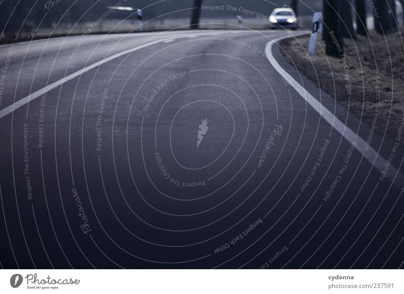 Tree Street Movement Lanes & trails Car Road traffic Signs and labeling Time Transport Speed Trip Target Asphalt Curve Motoring Expectation