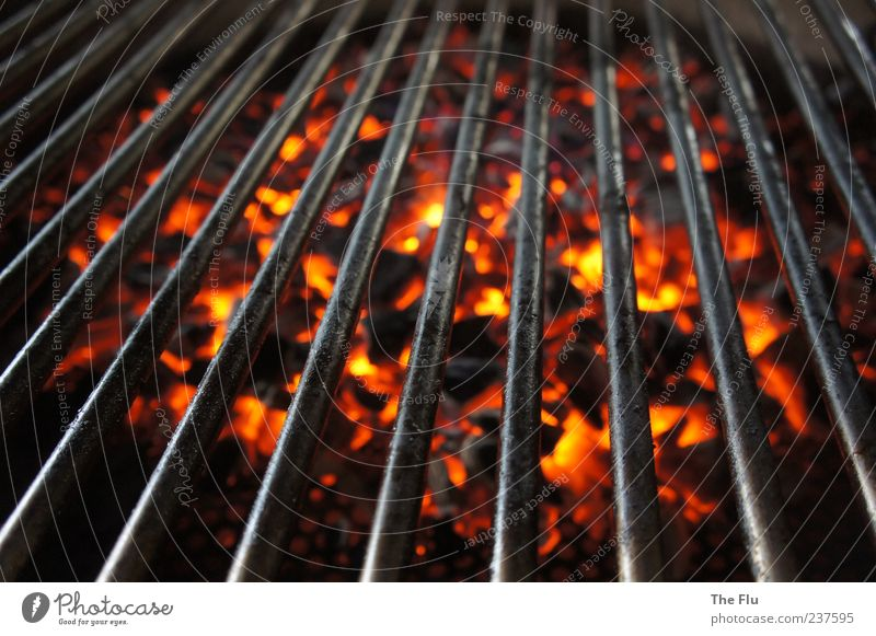 On hot coals! Barbecue (apparatus) Wood Metal Yellow Red Black Barbecue (event) Charcoal Fire Embers Glow Warmth Colour photo Detail Contrast Bird's-eye view