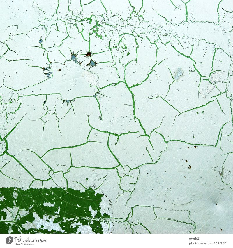 White Green Colour Line Bright Natural Change Transience Simple Tracks Past Decline Crack & Rip & Tear Bizarre Sharp-edged Prongs