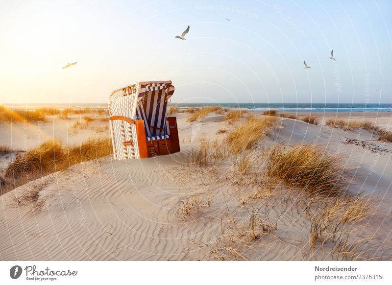 Beach chair in the dunes Senses Vacation & Travel Tourism Summer Summer vacation Sun Ocean Nature Landscape Elements Sand Water Cloudless sky Sunrise Sunset