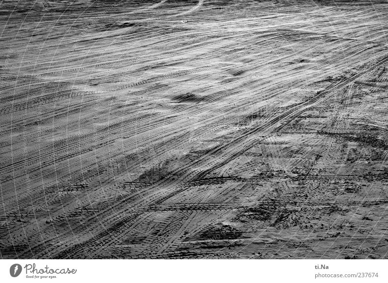 White Summer Beach Black Gray Sand Elements Tracks North Sea Black & white photo Traffic lane Ocean