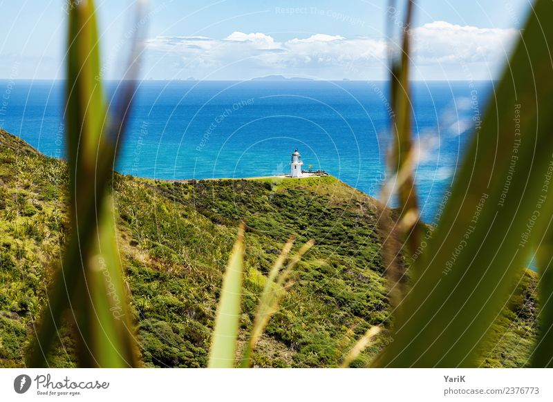 cape reinga Vacation & Travel Tourism Trip Adventure Far-off places Freedom Sightseeing Cruise Camping Summer Summer vacation Sun Ocean Island Waves Nature