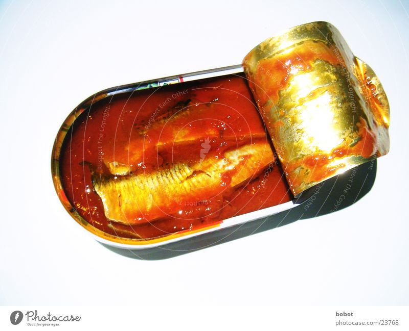 Fish in tomato Sauce Seafood Tin Tin of food Fishery Nutrition Tomato Oil