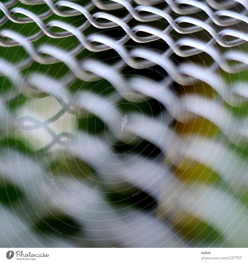 fence Environment Metal Net Network Glittering Dark Bright Gray Silver White Safety Orderliness Esthetic Bizarre Attachment Wire netting fence wire netting