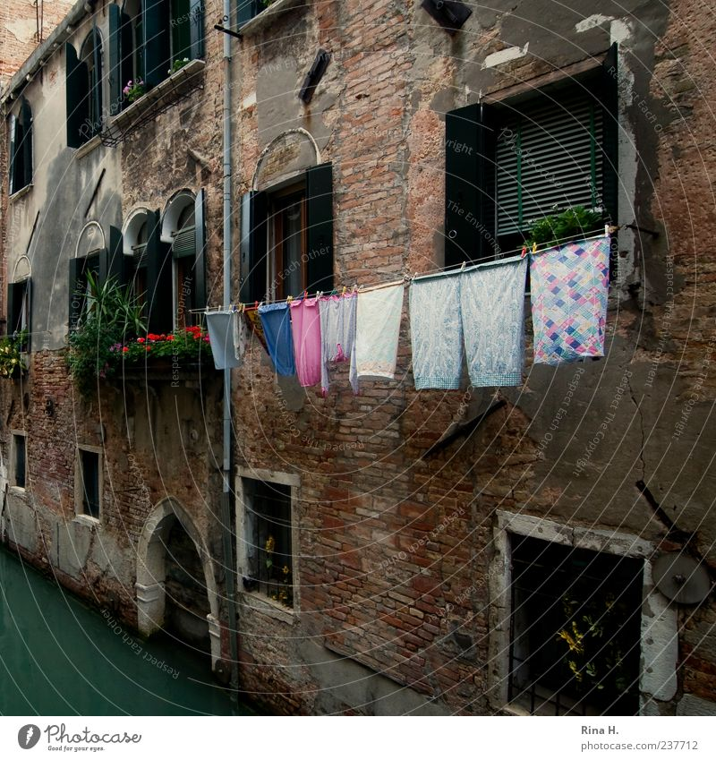 Washing day in Venice Vacation & Travel Italy Town Old town House (Residential Structure) Architecture Facade Authentic Multicoloured Cleanliness Laundry