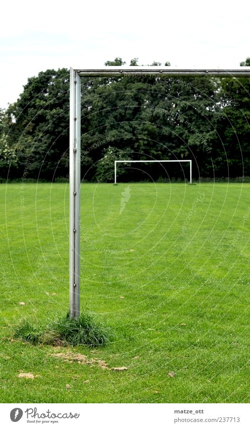 Goal in goal Leisure and hobbies Ball sports Soccer Sporting Complex Football pitch Pole Grass green Green Calm Loneliness Soccer Goal Goalpost corner Tree
