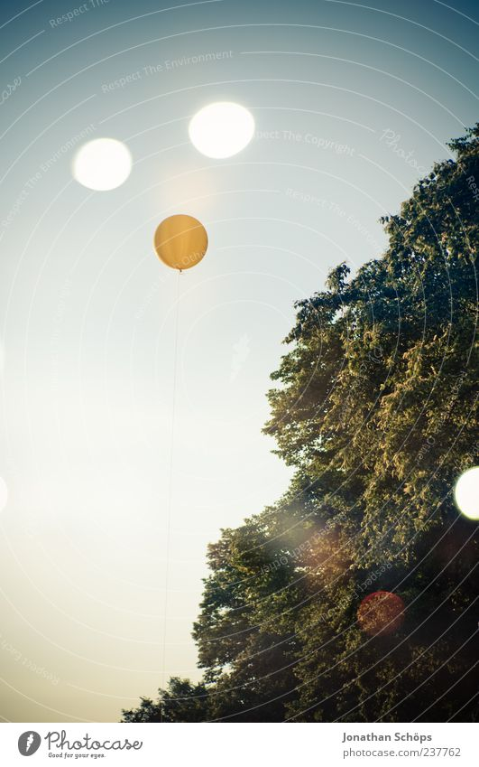 Sky Nature Blue Green Tree Yellow Air Exceptional Circle Balloon Round Double exposure Cloudless sky Phenomenon UFO Reaction