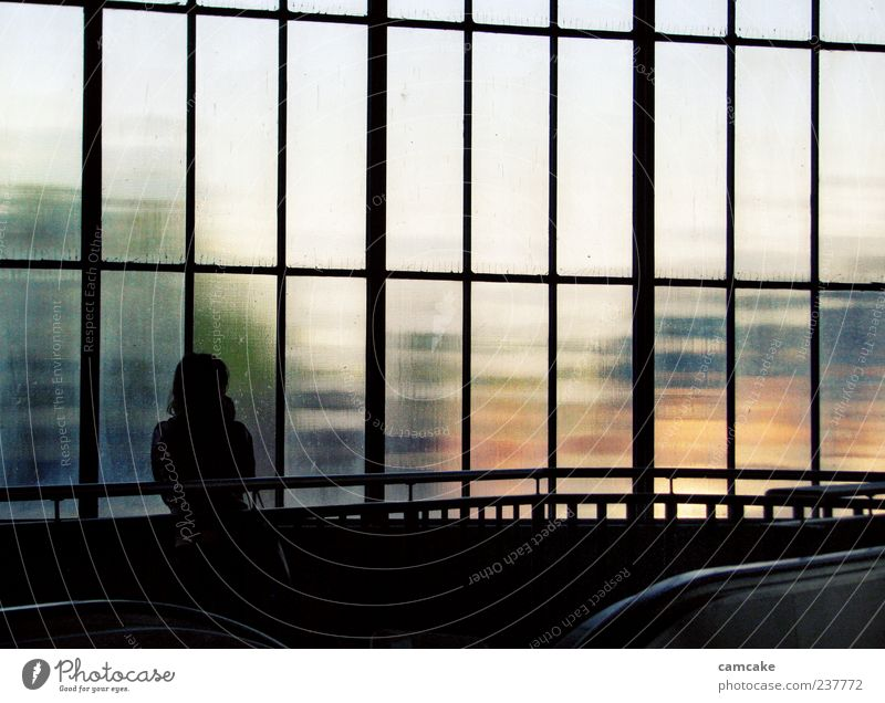 waiting on Human being 1 Train station Stand Wait Loneliness Uniqueness Glass wall Colour photo Interior shot Twilight Light Shadow Contrast Silhouette Blur