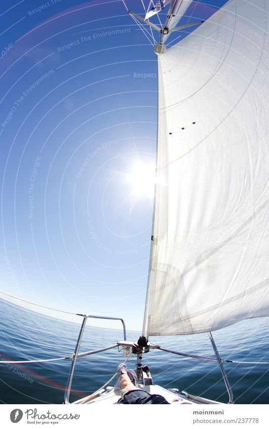 sail away Calm Leisure and hobbies Sailing Vacation & Travel Freedom Summer Sun Ocean Nature Water Cloudless sky Sunlight Beautiful weather Baltic Sea