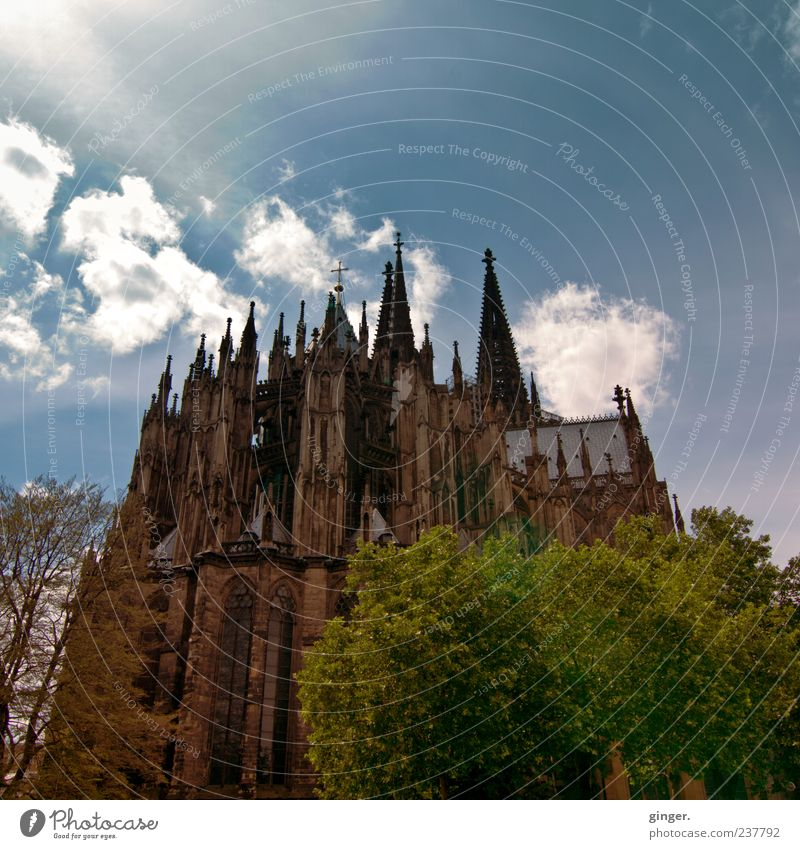 Beautiful from behind Cologne Downtown Church Dome Manmade structures Architecture Gothic period Cologne Cathedral Exceptional Large Behind Rear view Monumental