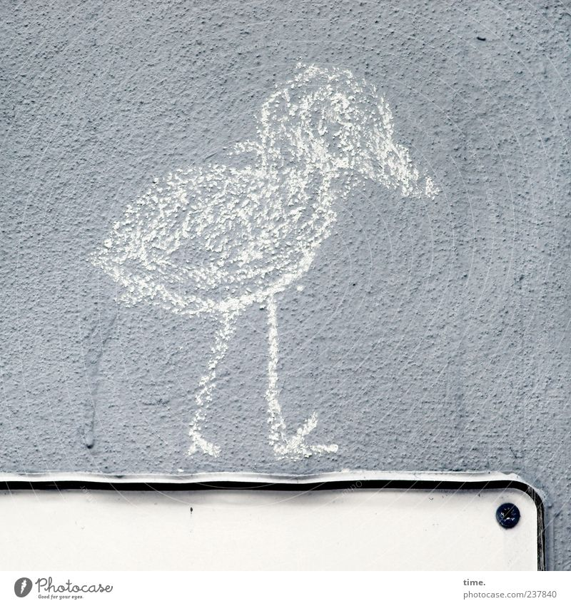 Shit Happens! Bird 1 Animal Signs and labeling Going Hiking Dirty Gray Serene Wall (building) Drawing Fastening Screw Chalk Painted Plaster Bordered Clue