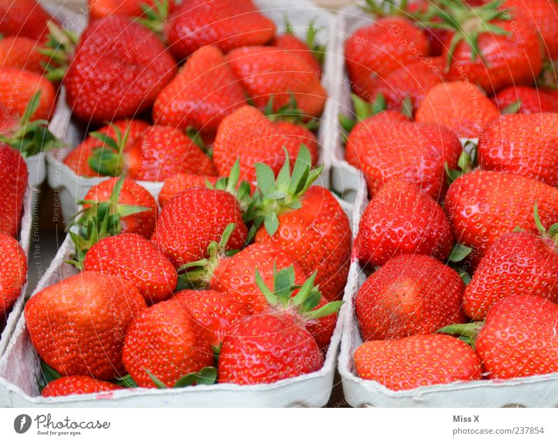 strawberry field Food Fruit Nutrition Organic produce Healthy Delicious Juicy Sweet Red Farmer's market Market stall Strawberry Fruit bowl Colour photo