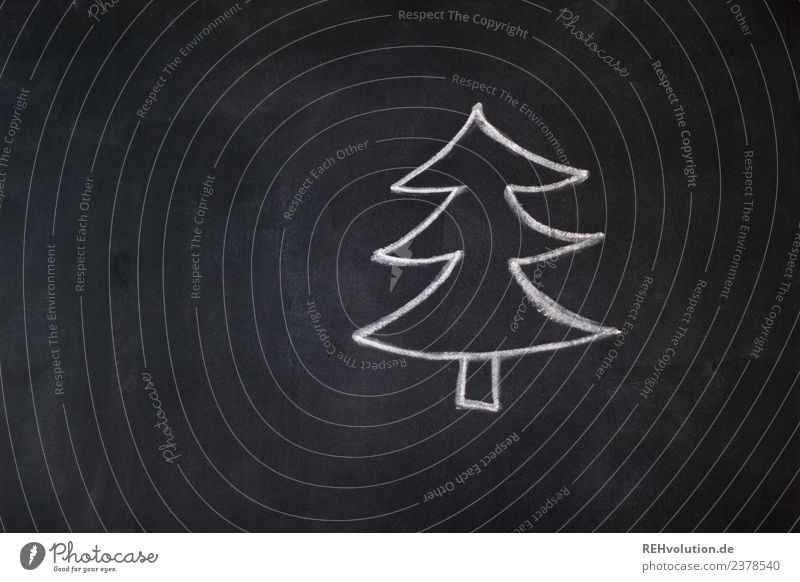 board drawing | fir tree Feasts & Celebrations Christmas & Advent Tree Exceptional Uniqueness Black White Fir tree Christmas tree Drawing Blackboard Chalk
