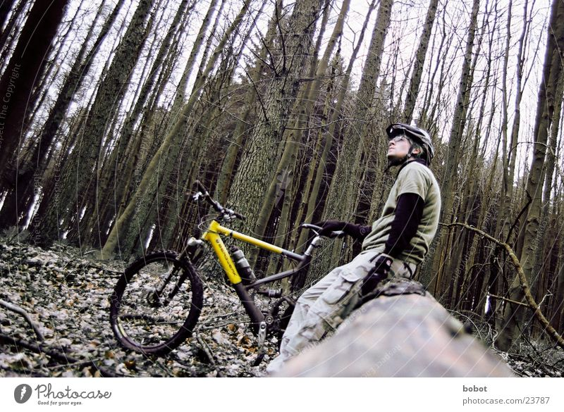 Leaf Forest Relaxation Sports Wood Bicycle Sit Transport Feather Tree trunk Endurance Tree bark Territory Mountain bike Perspire Spokes