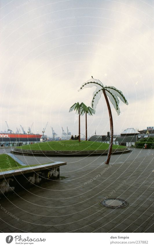 park fiction Exotic Vacation & Travel Art Work of art Bad weather Palm tree Park Hill St. Pauli Antoni Park Hamburg Port City Concrete Steel Exceptional Town