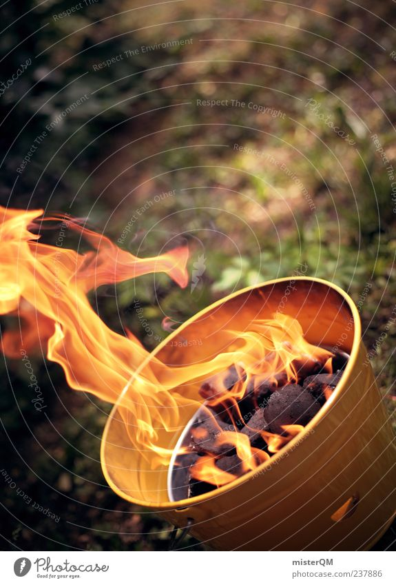 Summer Yellow Warmth Fire Cooking & Baking Hot Barbecue (event) Barbecue (apparatus) Wilderness Bucket Coal Prepare the food Raw materials and fuels Fiery