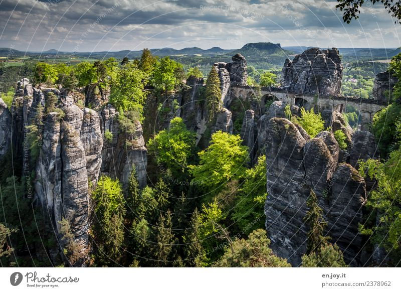 Nature Vacation & Travel Summer Landscape Far-off places Forest Time Tourism Germany Rock Trip Hiking Europe Idyll Adventure Transience