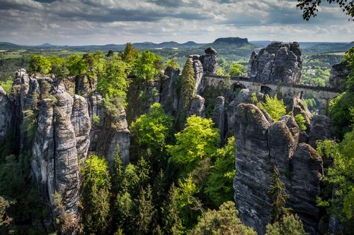 trip Vacation & Travel Tourism Trip Adventure Far-off places Summer Summer vacation Hiking Nature Landscape Forest Hill Rock Elbsandstone mountains Germany
