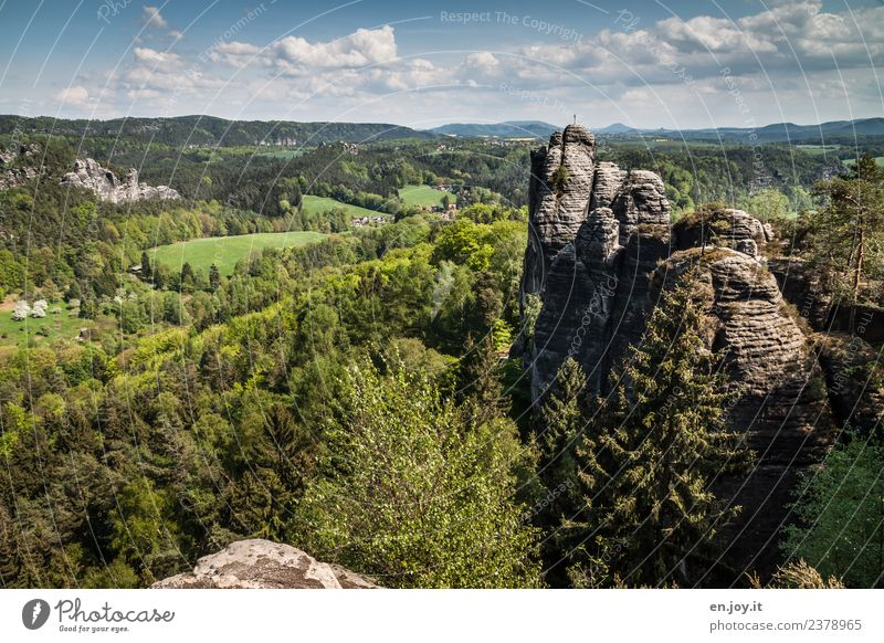 Sky Nature Vacation & Travel Summer Green Landscape Far-off places Forest Tourism Rock Trip Hiking Horizon Adventure Beautiful weather Hill