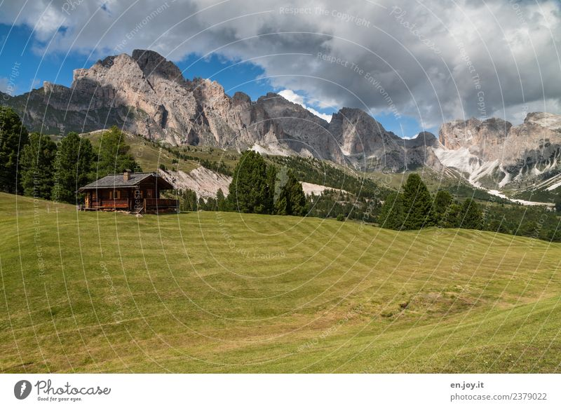 Heidi? Vacation & Travel Trip Adventure Summer Summer vacation Mountain Hiking Nature Landscape Clouds Meadow Hill Rock Alps Dolomites Peak Alpine pasture Italy
