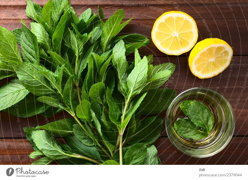 Fresh Mint and Mint Tea Herbs and spices Beverage Natural spearmint Bundle remedy medicine Aromatic sprig flavor healthy herbal Raw food cooking condiment