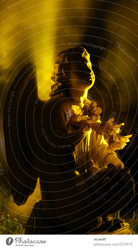 Calm Yellow Death Dream Sadness Religion and faith Hope Grief Angel End Transience Sign Sculpture Figure Belief Eternity