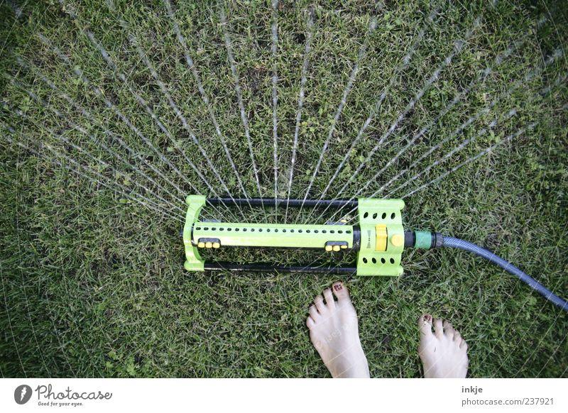 Water Life Meadow Grass Garden Feet Line Leisure and hobbies Wet Barefoot Gardening Inject Cast Drought Nail polish Human being