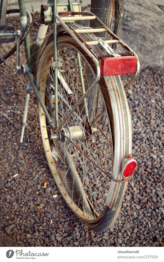 flat foot Lanes & trails Bicycle Stand Old Broken Parking Flat tire Level Wheel Rust Rear light Reflector Disposed of Gravel path Guard Wheel rim Colour photo