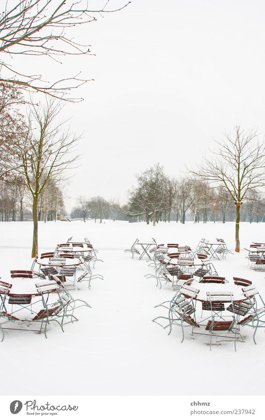 ice age Restaurant Winter Snow Tree Park Cold White Café Table Chair Meadow Covered Bleak Loneliness Empty Deserted Colour photo Subdued colour Exterior shot