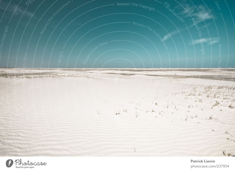 Spiekeroog | free falling Contentment Calm Far-off places Beach Ocean Island Environment Nature Landscape Sand Sky Climate Weather Beautiful weather Coast