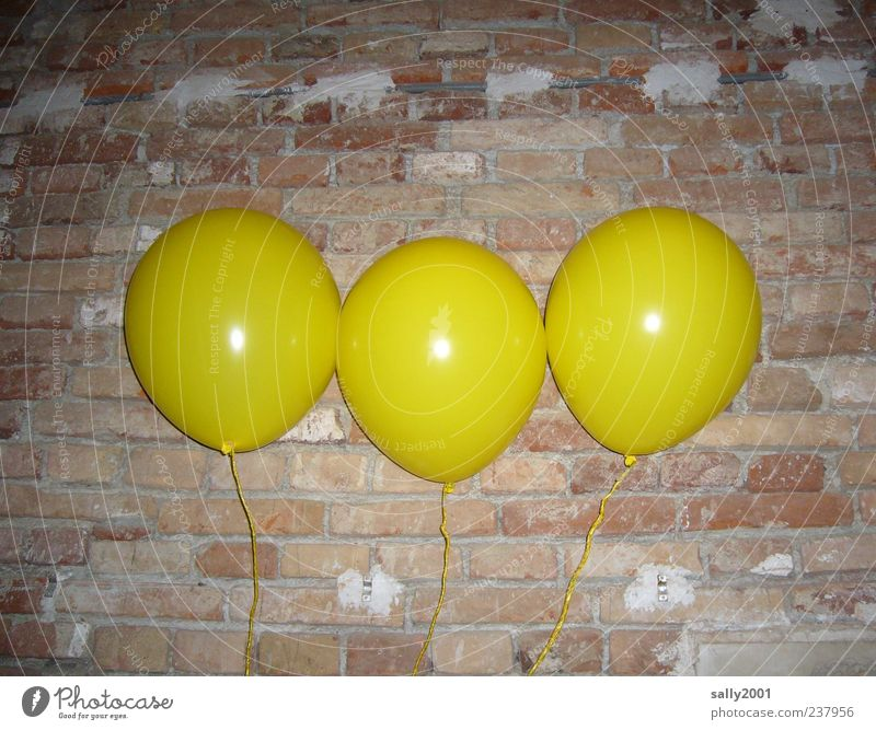 The 3 aircrafts Leisure and hobbies Playing Balloon Carnival Wall (barrier) Wall (building) Feasts & Celebrations Flying Happiness Round Yellow Life Happy