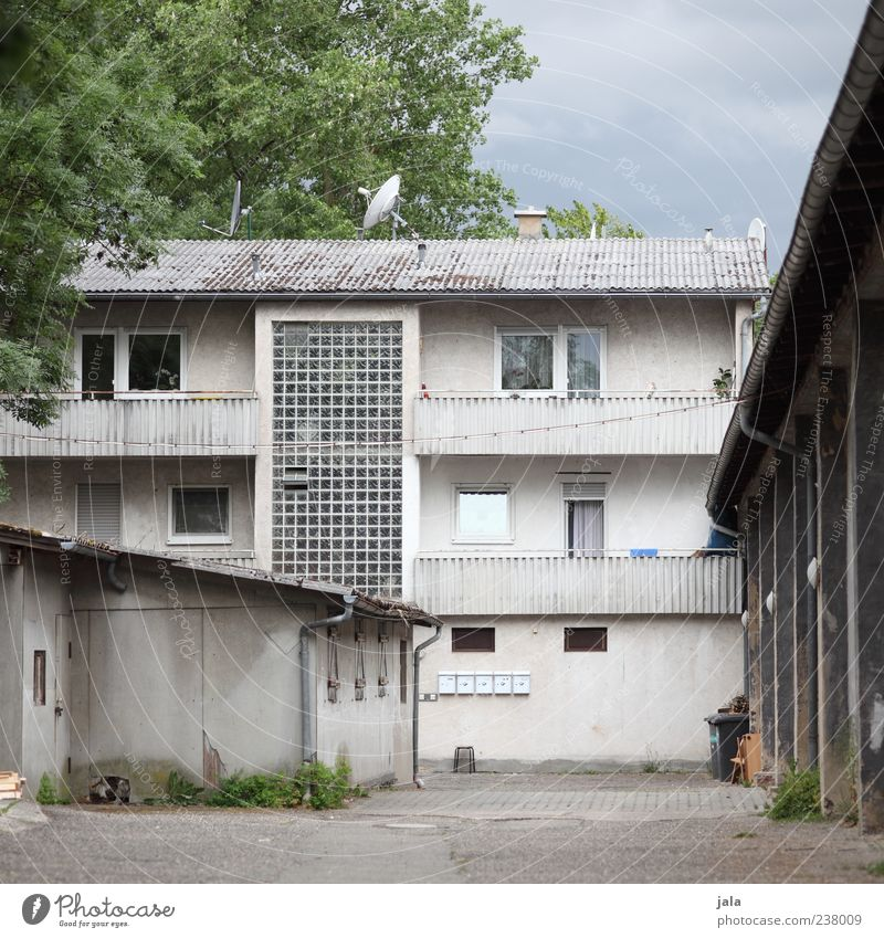 backyard Sky Tree House (Residential Structure) Manmade structures Building Architecture Courtyard Facade Balcony Window Door Satellite dish Gloomy Colour photo