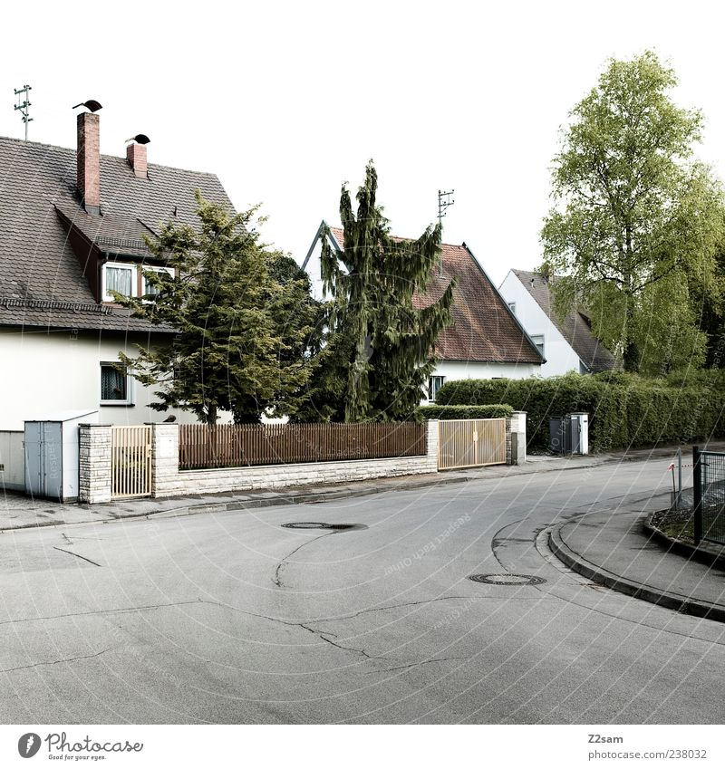 Tree Calm House (Residential Structure) Street Germany Gloomy Simple Fence Traffic infrastructure Stagnating Normal Detached house SME Building
