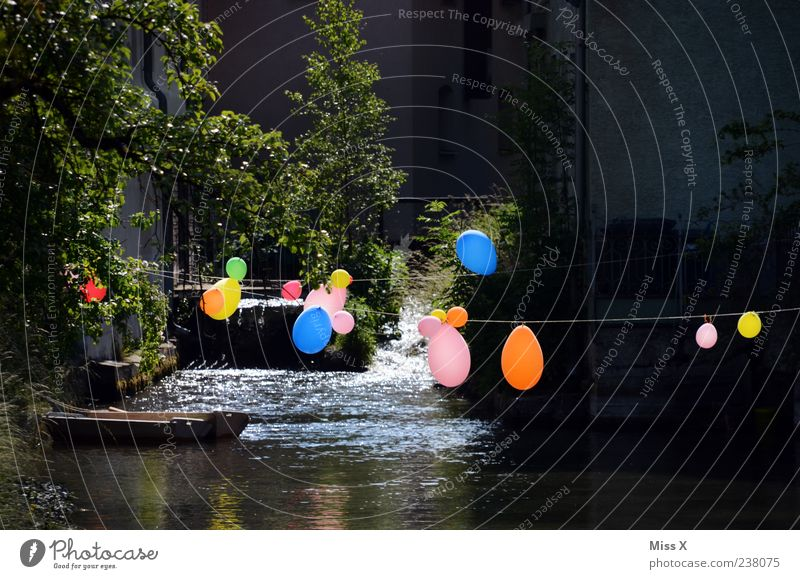 party Feasts & Celebrations Brook River Waterfall Multicoloured Colour Balloon Colour photo Exterior shot Close-up Deserted Copy Space top Copy Space bottom