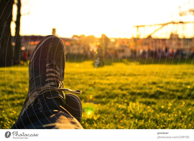 evening sun Joy Happy Harmonious Well-being Contentment Relaxation Leisure and hobbies Summer Sun Sunbathing Human being Masculine Man Adults Legs Feet 1