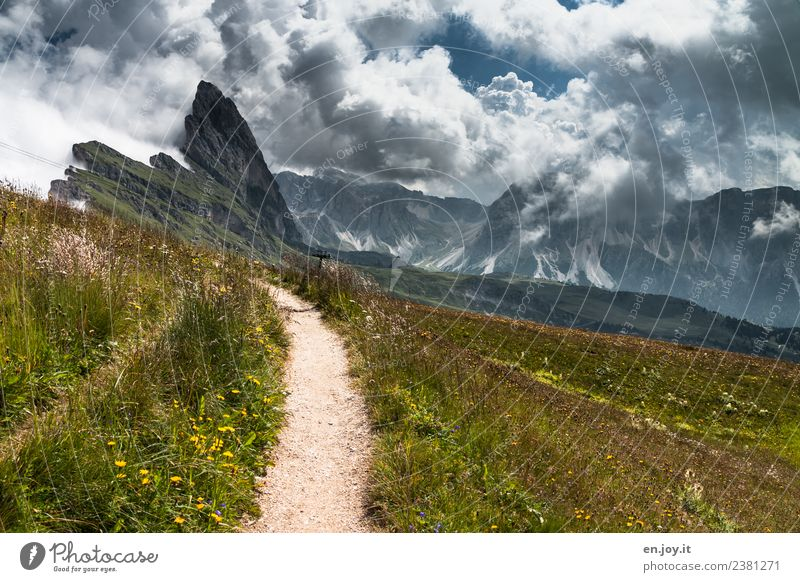 This way Vacation & Travel Tourism Trip Adventure Far-off places Freedom Summer Summer vacation Mountain Hiking Nature Landscape Sky Clouds Storm clouds Climate