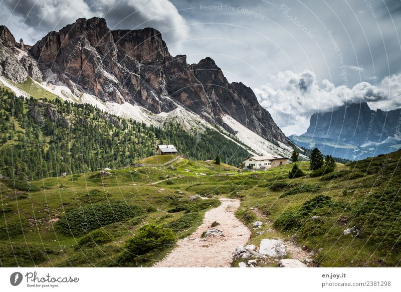footpath Vacation & Travel Tourism Trip Adventure Far-off places Summer Summer vacation Mountain Hiking Nature Landscape Storm clouds Meadow Rock Alps stevia
