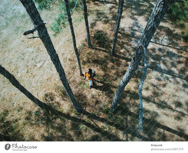 Aerial view of a hiker walking through the woods. Forest Hiking Backpack Tree Boots Nature Exterior shot Lanes & trails Park Camping Green Brown Grass Leaf
