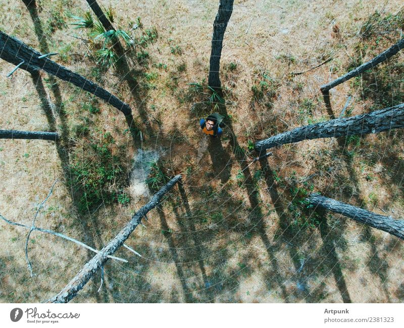 An aerial view of a hiker in the woods looking up Forest Hiking Camping Tree Backpack Lanes & trails Adventure Summer Grass Nature Exterior shot Aircraft Drone