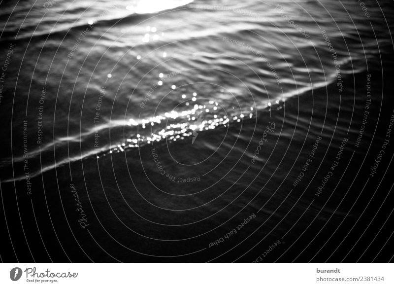 Nature Summer Water Landscape Ocean Beach Black Environment Coast Waves Glittering Esthetic North Sea Mystic Highlight