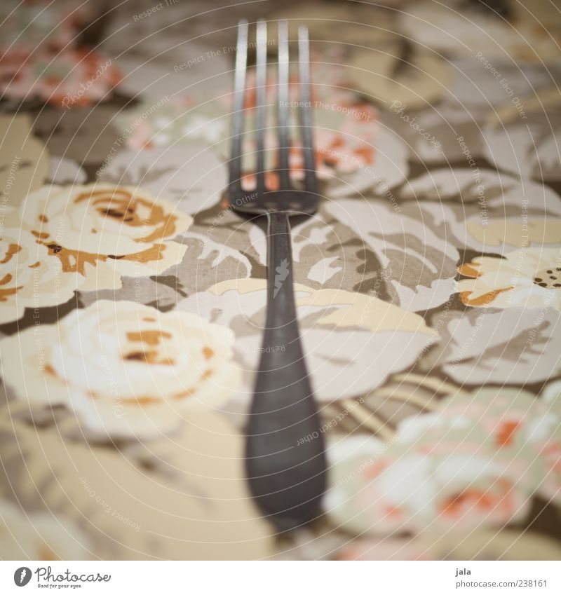 fork Cutlery Fork Esthetic Silver Lie Close-up Colour photo Interior shot Deserted Copy Space left Copy Space right Tablecloth 1 Flowery pattern Blur