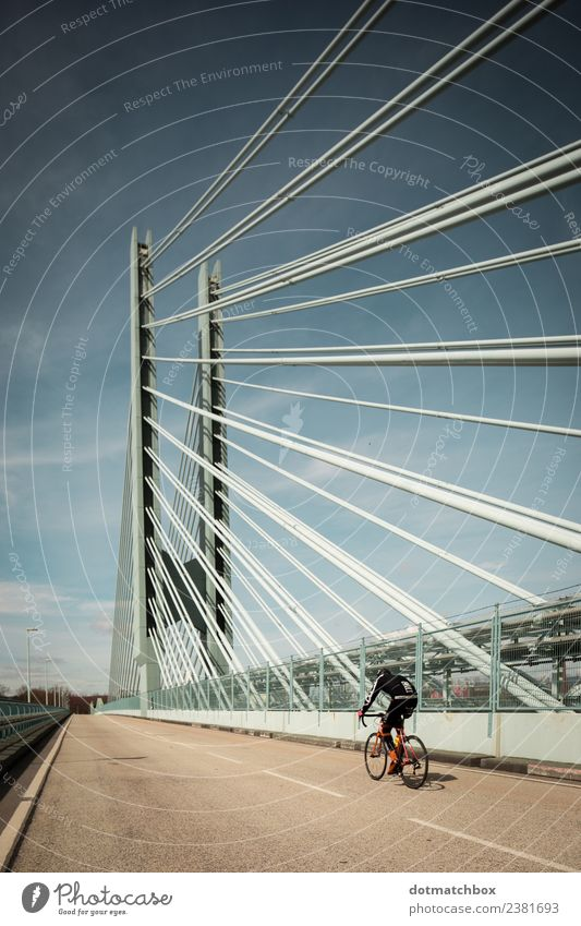 Blue Town Relaxation Joy Street Yellow Sports Freedom Gray Leisure and hobbies Bicycle To enjoy Cycling Fitness Bridge Industry