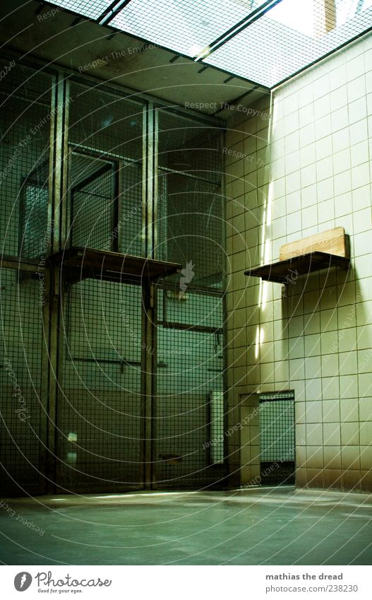 cage Manmade structures Building Architecture Wall (barrier) Wall (building) Zoo Old Dark Sharp-edged Emotions Cage Grating Captured Empty Tile Colour photo