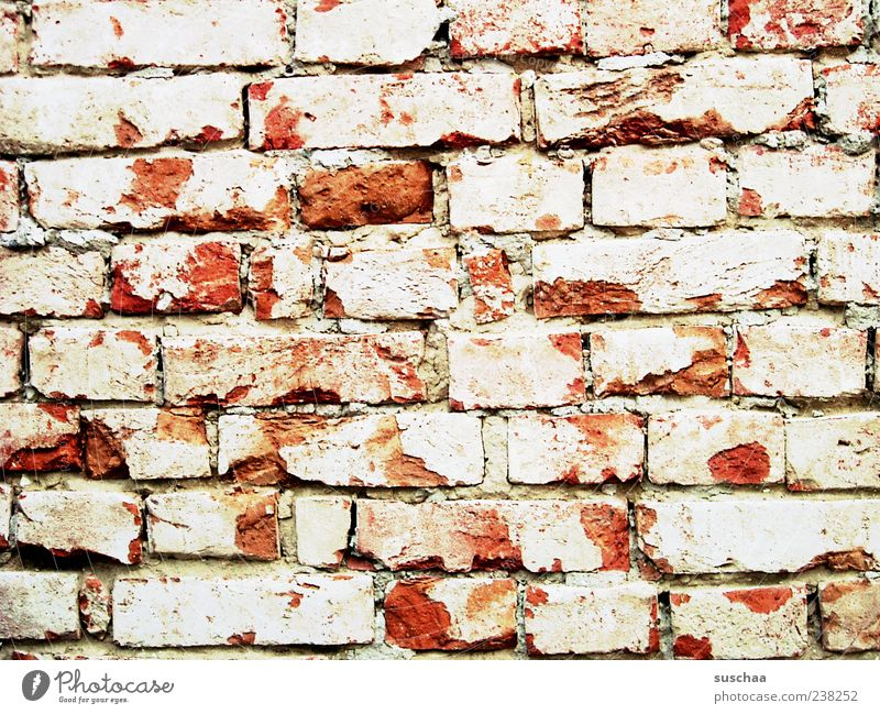 the wall .. Wall (barrier) Wall (building) Stone Concrete Brick Red Hard Closed Screening Barrier Weathered Colour photo Exterior shot Pattern