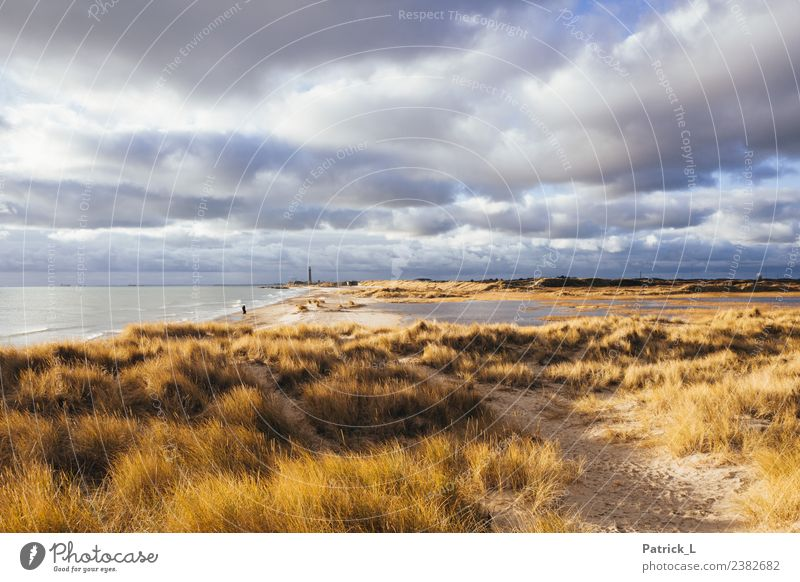 Skagen Grenen Vacation & Travel Tourism Trip Adventure Far-off places Freedom Expedition Beach Ocean Waves Hiking Closing time 1 Human being Landscape Sand