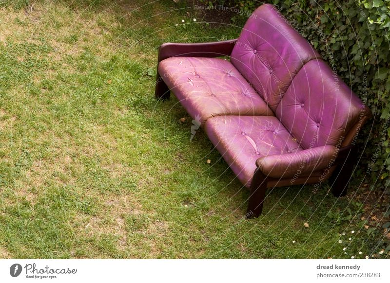 Nature Summer Calm Relaxation Meadow Life Grass Freedom Garden Friendship Feasts & Celebrations Exceptional Sit Places Chair Lawn