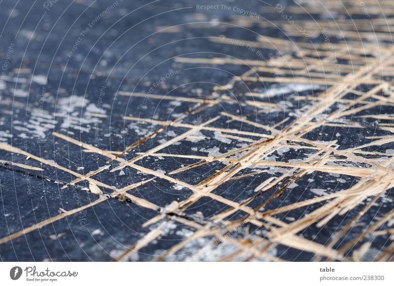 Old Black Wood Gray Line Brown Floor covering Broken Change Decline Chaos Stage Wooden board Muddled Destruction Effort